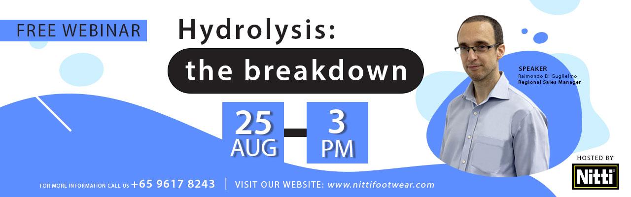 Hydrolysis: the breakdown